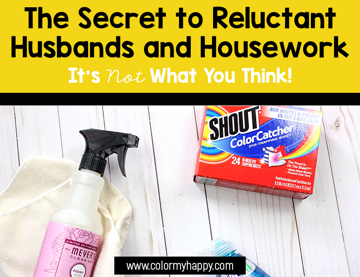 "Dawn dish soap, multipurpose spray, microfiber cloth, and Shout color catchers with the words ""The Secret to Reluctant Husbands and Housework: It's Not What You Think!"""